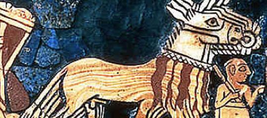 acondrocito-540x240.jpg
