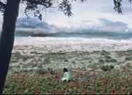 Faezeh, Shirin Neshat