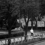 petesburgo_540x240.jpg