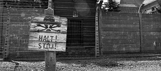 Auschwitz3_540.jpg