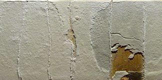 -Blanco.-(2004)-27-x-55_620.jpg
