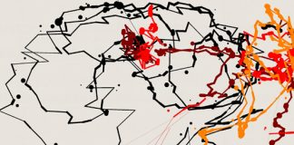 pollock-2012-10-19-19-30-20-638_540.jpg