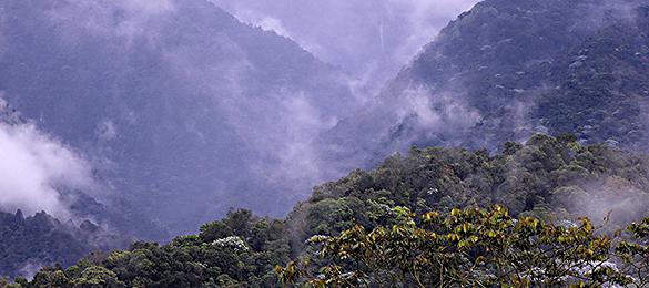 Cuenca-del-Río-Barbo-vista-desde-el-Morro-Azul_540.jpg