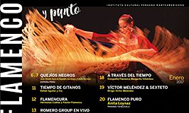 AFICHE-Flamenco-2017-FINAL-768x549.jpg