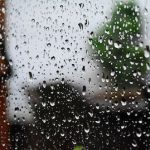 rain-1548426_640.jpg